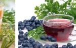 Гастрит с повышенной кислотностью: лечение народными средствами