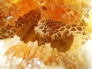 язва луковицы дпк лечение народными средствами